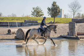 Markenbotschafter Kramer Pferdesport