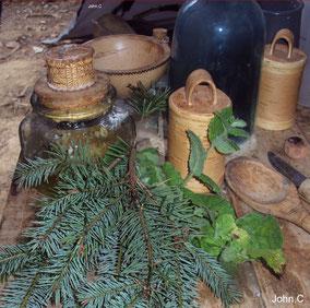 bouleau boite écorces utilisation vannerie travail du bois