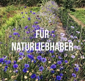 Einige unserer Ausflüge am Bodensee führen Euch mitten in die Natur, bzw. an Orte, an denen sich die Natur von ihrer schönsten Seite zeigt.