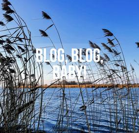 Blog mit Ausflugstipps rund um den Bodensee. Mit dabei sind die Regionen Untersee & Hegau, Obersee, Überlingen See & Linzgau, Ostschweiz und Vorarlberg.