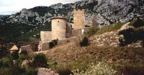 vue du château en janvier 1999