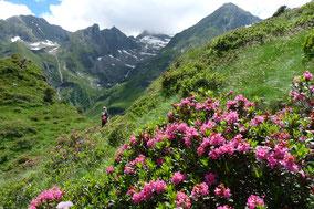 randonnée cabane d'ourtiga, vallée du Louron, Pyrénées