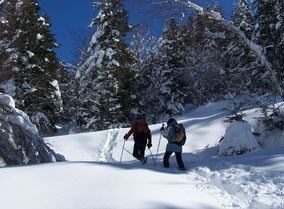 randonnée raquettes à neige privatisée