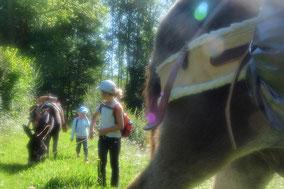 balade familiale avec des ânes dans le Nistos