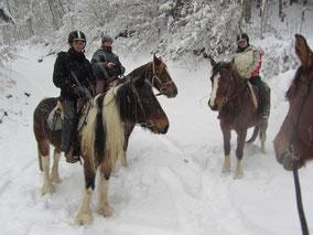 Reiten Pferde Schnee Erwachsene