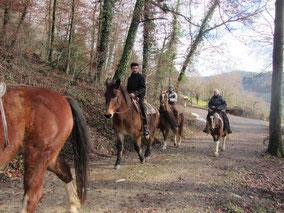 Ausritt Familie Sozzi Pferde Abenteuer, Erlebnis, Wettingen