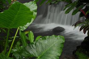 Aguas Termales Volcan Arenal