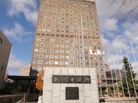 札幌市役所 約1100m/徒歩14分
