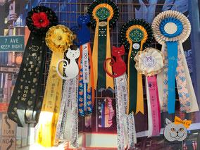 Cocardes : les prix d'Astuce lors des expositions