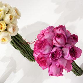 """Yves Piaget"", Roses très parfumées"