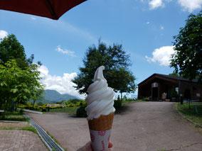 萌木の森で大好きなソフトクリームも堪能!