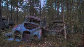 Urbex - Car Cemetery K.