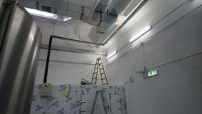 興建本地啤酒廠工程, 食品工場出牌 cold storage in a brewery for food factory licence HK