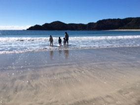 2月に海を楽しむワイルドファミリー