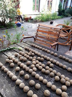 Blumenkugeln liegen zum trocknen in der Sonne auf einem Gartentisch. Studiolaube, Seedbombs, Seedballs, Garten