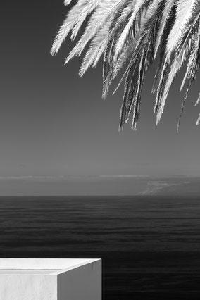 Mocanal, El Hierro, Atlantik, Palme, palm tree, Infrarot, Holger Nimtz, Infrared, Fotografie, Photography, Infrarotaufnahme, IR,