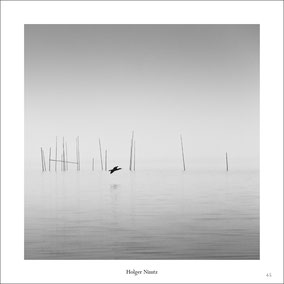 B&W Minimalism Magazine, Cormorant, Berlin, Müggelsee, schwarz-weiß, Minimalismus, minimalism, minimalist, minimalistisch, Holger Nimtz, Wandbild, Kunst, fine art, Fotokunst, Photography,