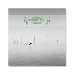 Monochrome Photography Awards 2017, Berlin, Cormorant, schwarz-weiß, Minimalismus, minimalism, minimalist, minimalistisch, Holger Nimtz, Wandbild, Kunst, fine art, Fotokunst, Photography,