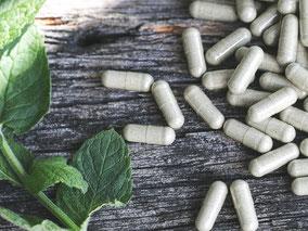 Productos naturistas, Suplementos y Complementos Alimenticios