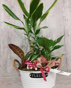 Cesta de plantas. 35€