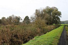 Schäfers Teich