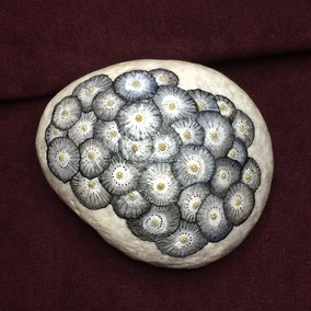 Fleurs acrylique noir et blanc - perles argentées - gros galet blanc - vernis mat