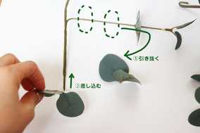 ③茎先は他の枝葉を抜いて差し込んだりボンドで接着するとより自然です