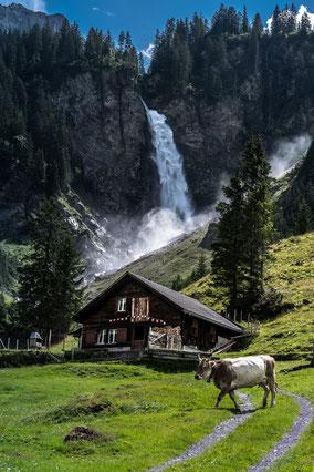 7. Platz meine Schweiz