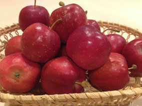 いつ見ても可愛らしい姫リンゴ