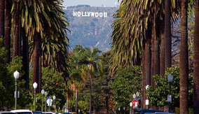 HOLLYWOOD FDKM