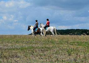 Ausreiten, Pferde, Ferienwohnung Haus im Gässle, Ödenwaldstetten
