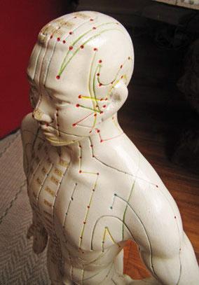 Les merdiens et les points d'accupontures stimulés par la coupe énergétique© de Rémi portrait. Coiffeur coiffure à domicile. Paris 12