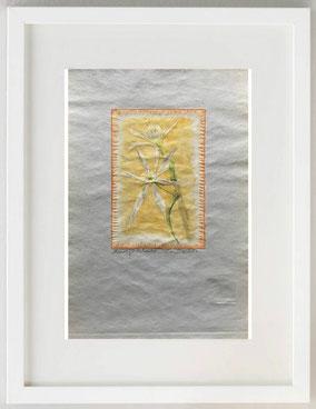 GIGLIO BIANCO DI MARE, 2020, linoleum grafia retouchè,  20 x 30