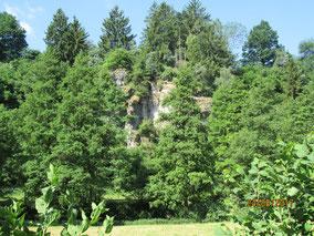 06/17: WT See b. Parsberg: Jurafelsen