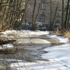 WT Büchenbach: zugefrorene Aurach