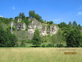 Hohenschambach: Im Labertal nahe Laaber