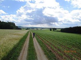 Wandertag in Hirschau heißt aber auch, die Natur