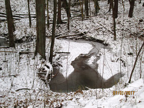 WT Allersberg: tiefster Winter