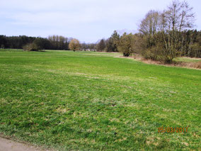 WT Leonberg: Der Frühling ist da!