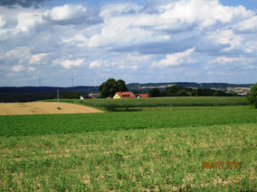 WT Hohenschambach: Blick übers Jura nach Norden