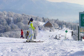 Ski Alpin 9 téléskis