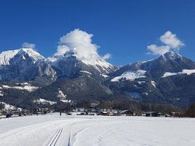 Winter Skilanglauf