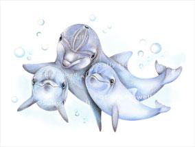 """""""Dolphin Family"""" Print $27-79"""