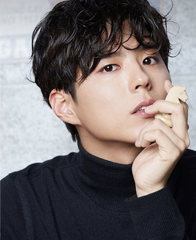 Park Bo Gum, Korean actor