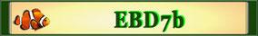 Die Seminargruppe EBD7b