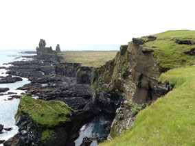 Púfubjarg-Snaefellsnes-zeekoet-rondje-IJsland-.jpeg