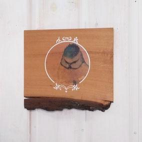Die Manufaktur WARE FREUDE und der Little Shop of Nature in der Westendstraßp in München