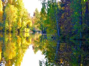 Herbst am See Finnland