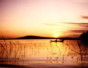 Angeln Sonnenaufgang Päijänne See Finnland Sunny Mökki Sysmä