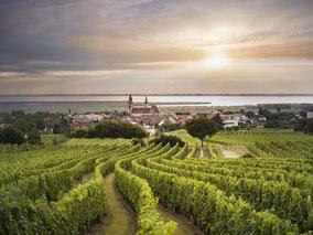 MAG Lifestyle Magazin online Kulinarik Genuss österreichische Weine Burgenland Rust Herkunftsschutz DAC Süßweine Neusiedler See